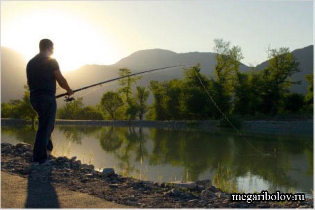 правительство о любительской рыбалке