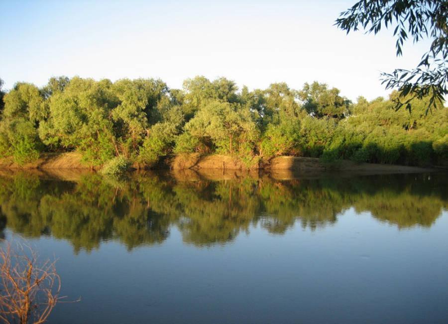 Картинка реки ишим