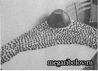 Изготовление бойлов в домашних условиях