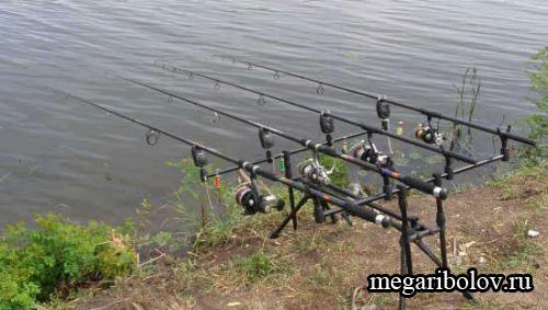Статьи о рыбалке на карпа (карповая ловля), рыболовные обзоры и ...