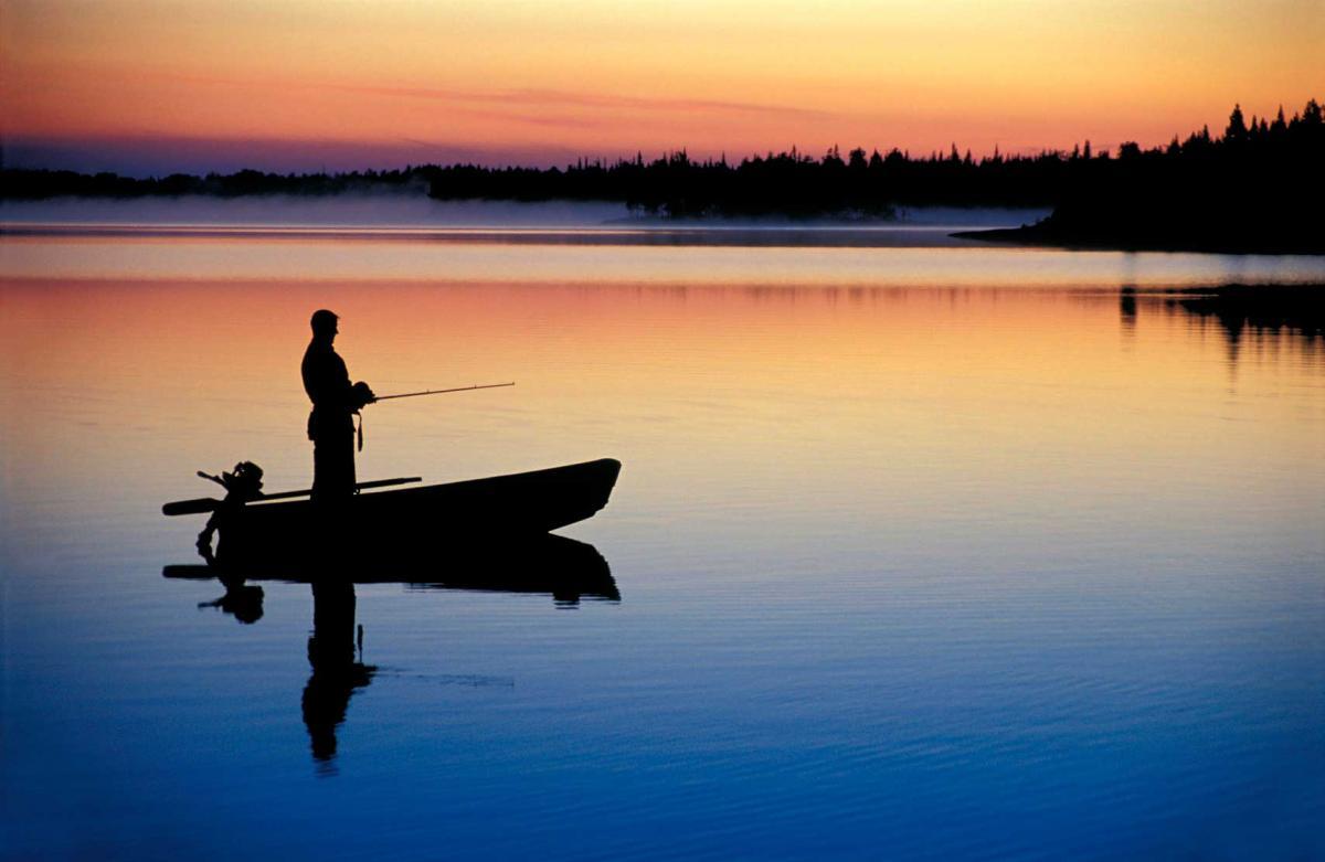 прикормка для ловли в проводку на течении