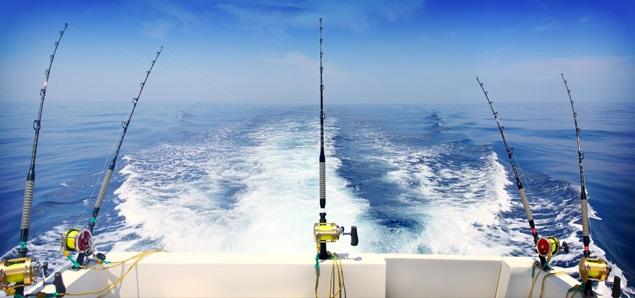 Троллинг - основные понятия, морской и пресноводный троллинг